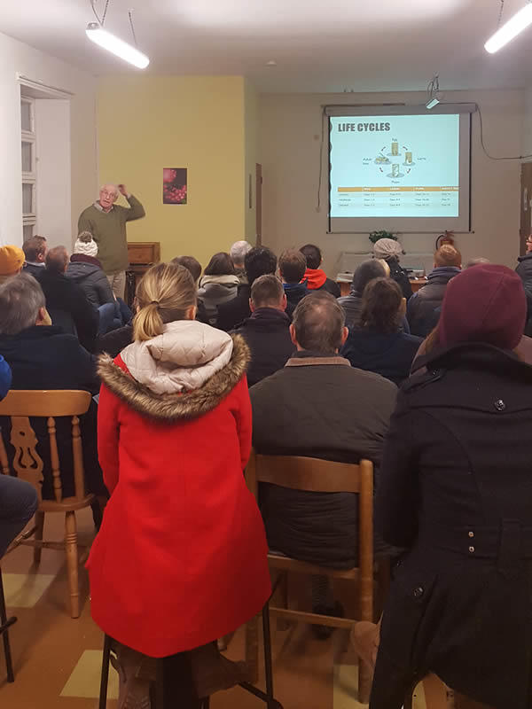 Beekeeping Classes at Tribes Beekeepers Association Galway