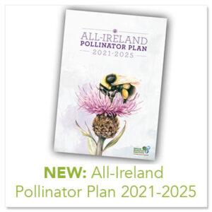 All Ireland Pollinator Plan 2021 - 2025
